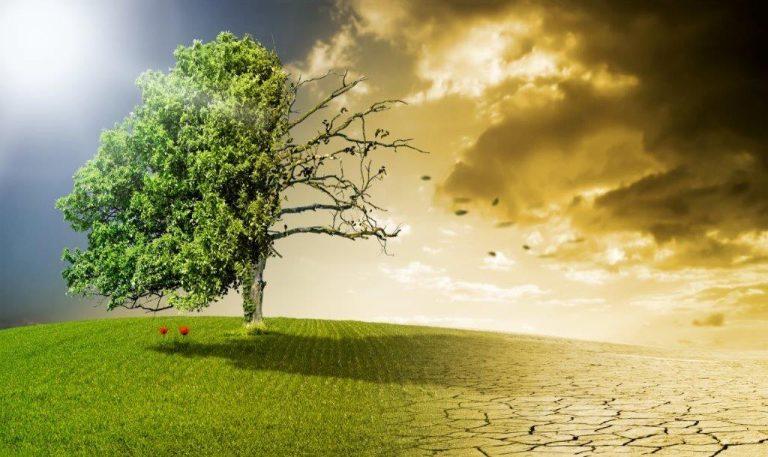 Klimawandel und Schadstoffe in der Luft