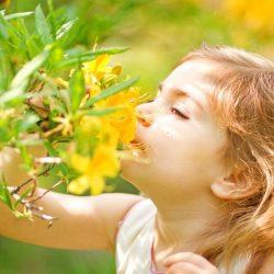 Luftqualität und gesundheitliche Risiken bei Kindern